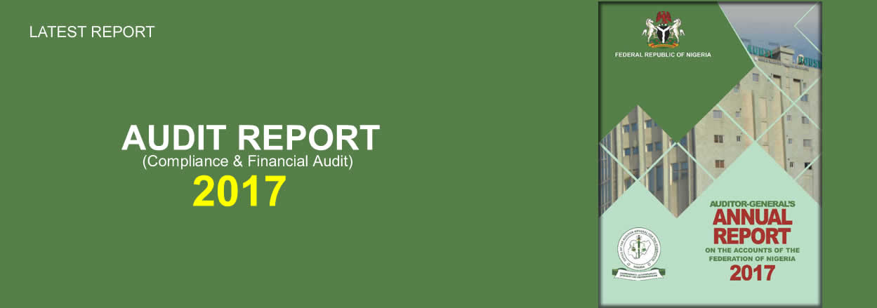 Audit Report 2017